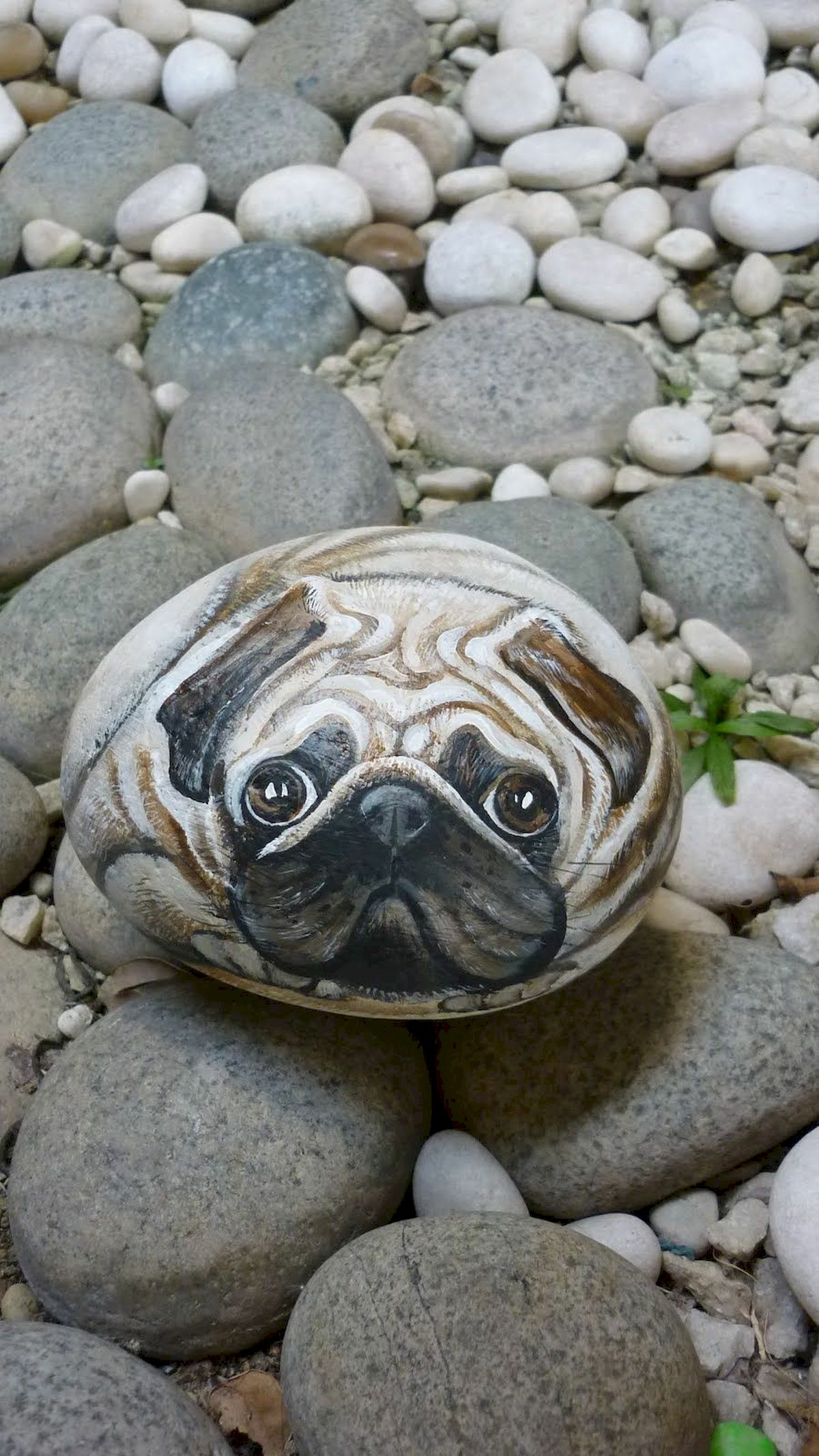 40 Favorite DIY Painted Rocks Animals Dogs for Summer Ideas (32)