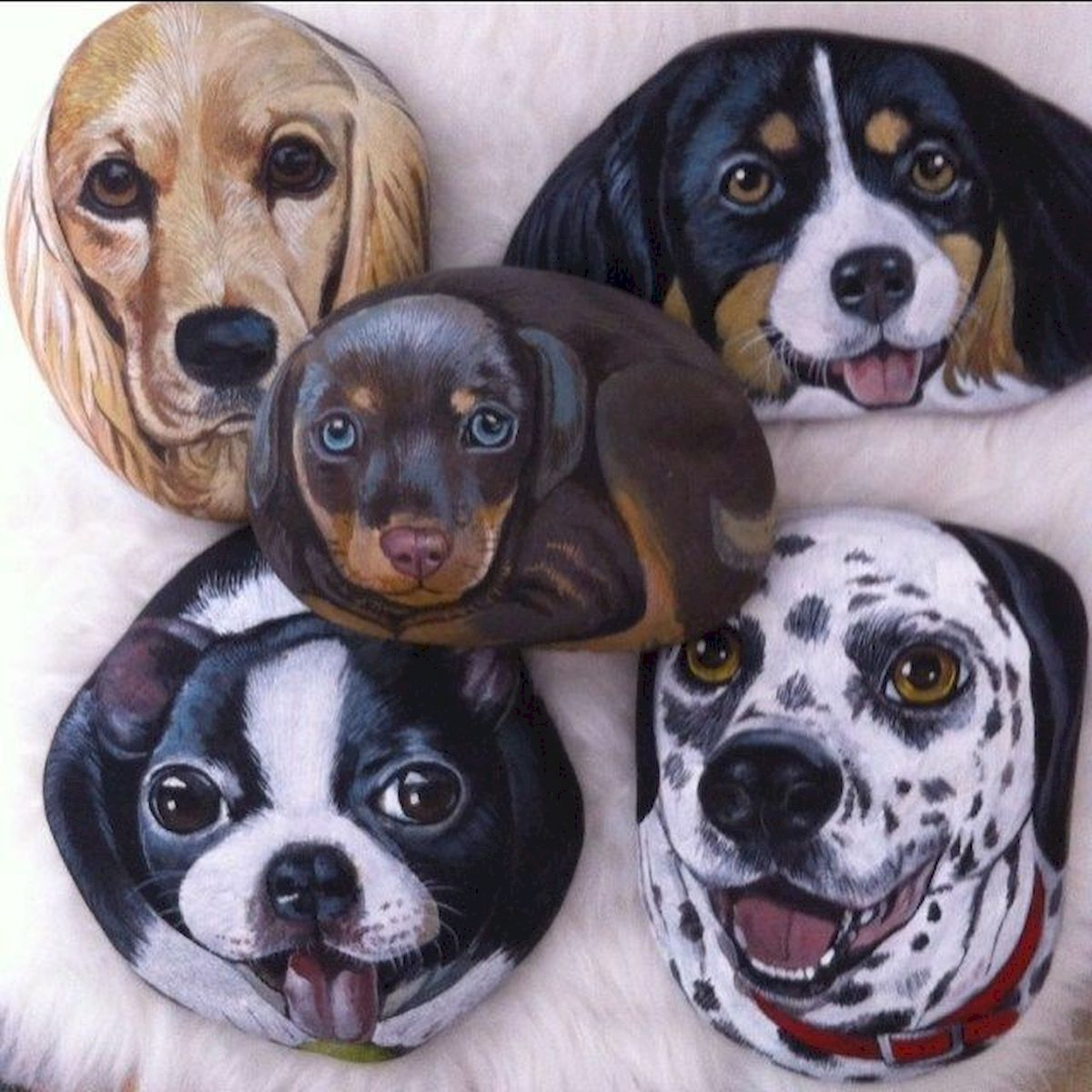 40 Favorite DIY Painted Rocks Animals Dogs for Summer Ideas (6)