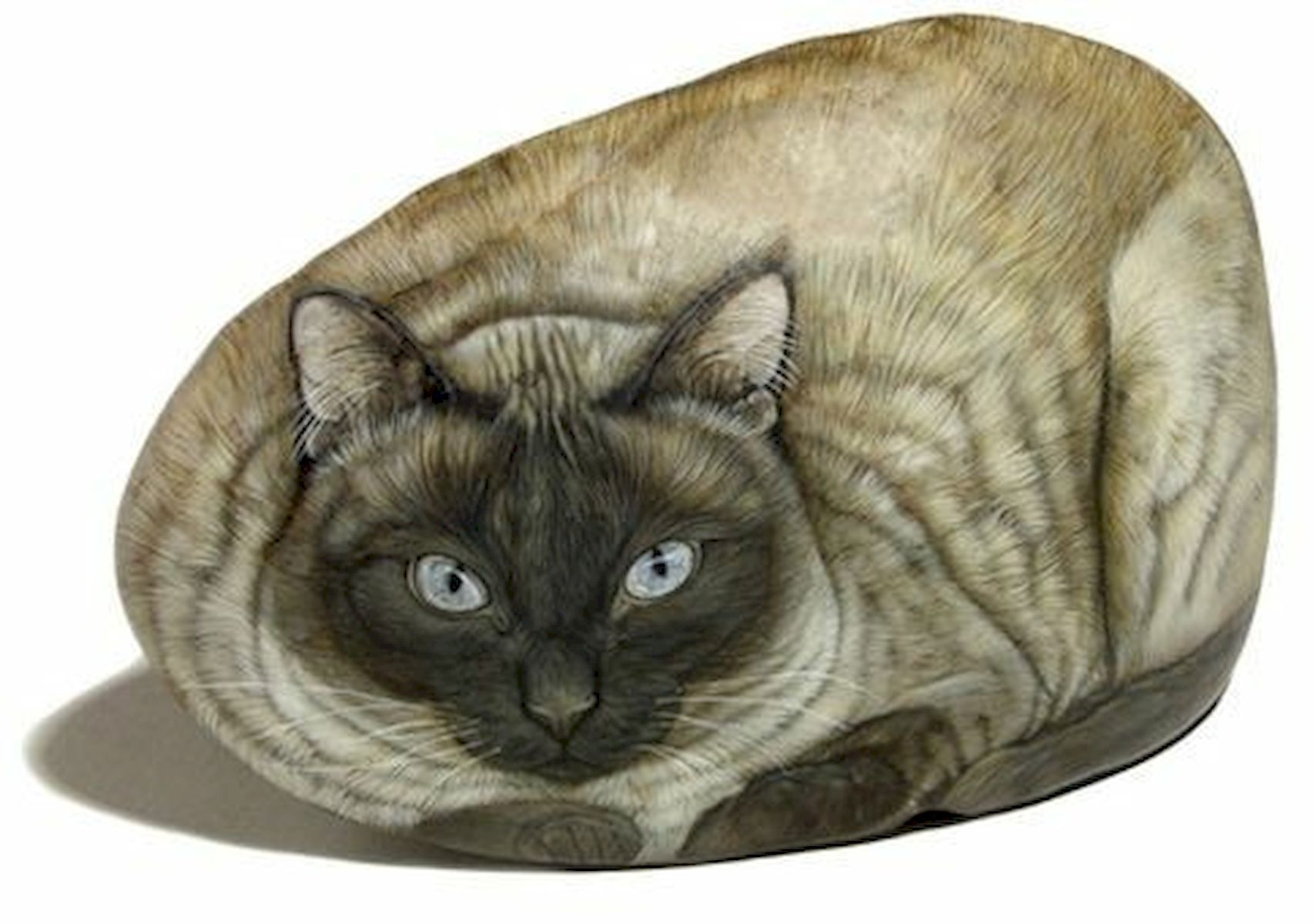 50 Best DIY Painted Rocks Animals Cats for Summer Ideas (34)
