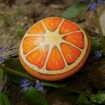 40 Awesome DIY Painted Rocks Fruits Ideas (20)