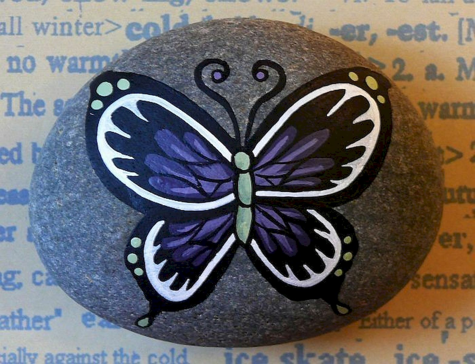 55 Cute DIY Painted Rocks Animals Butterfly Ideas (16)