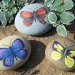 55 Cute DIY Painted Rocks Animals Butterfly Ideas (23)