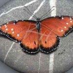 55 Cute DIY Painted Rocks Animals Butterfly Ideas (31)