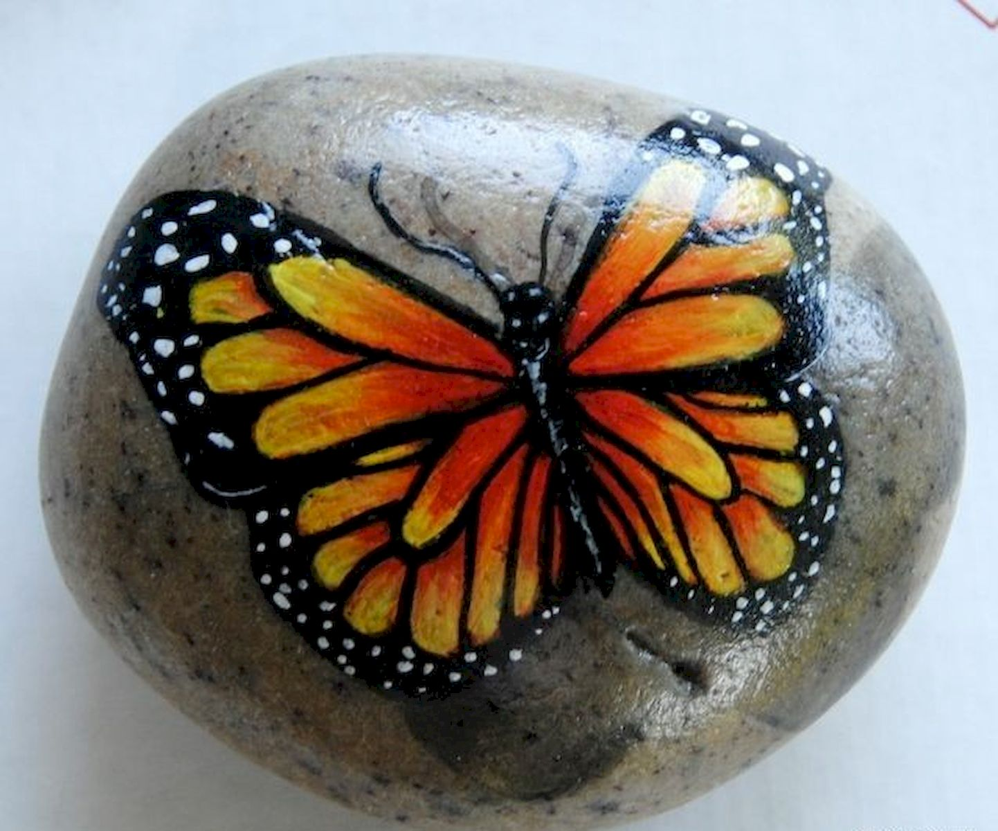 55 Cute DIY Painted Rocks Animals Butterfly Ideas (35)