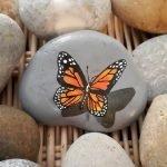 55 Cute DIY Painted Rocks Animals Butterfly Ideas (43)