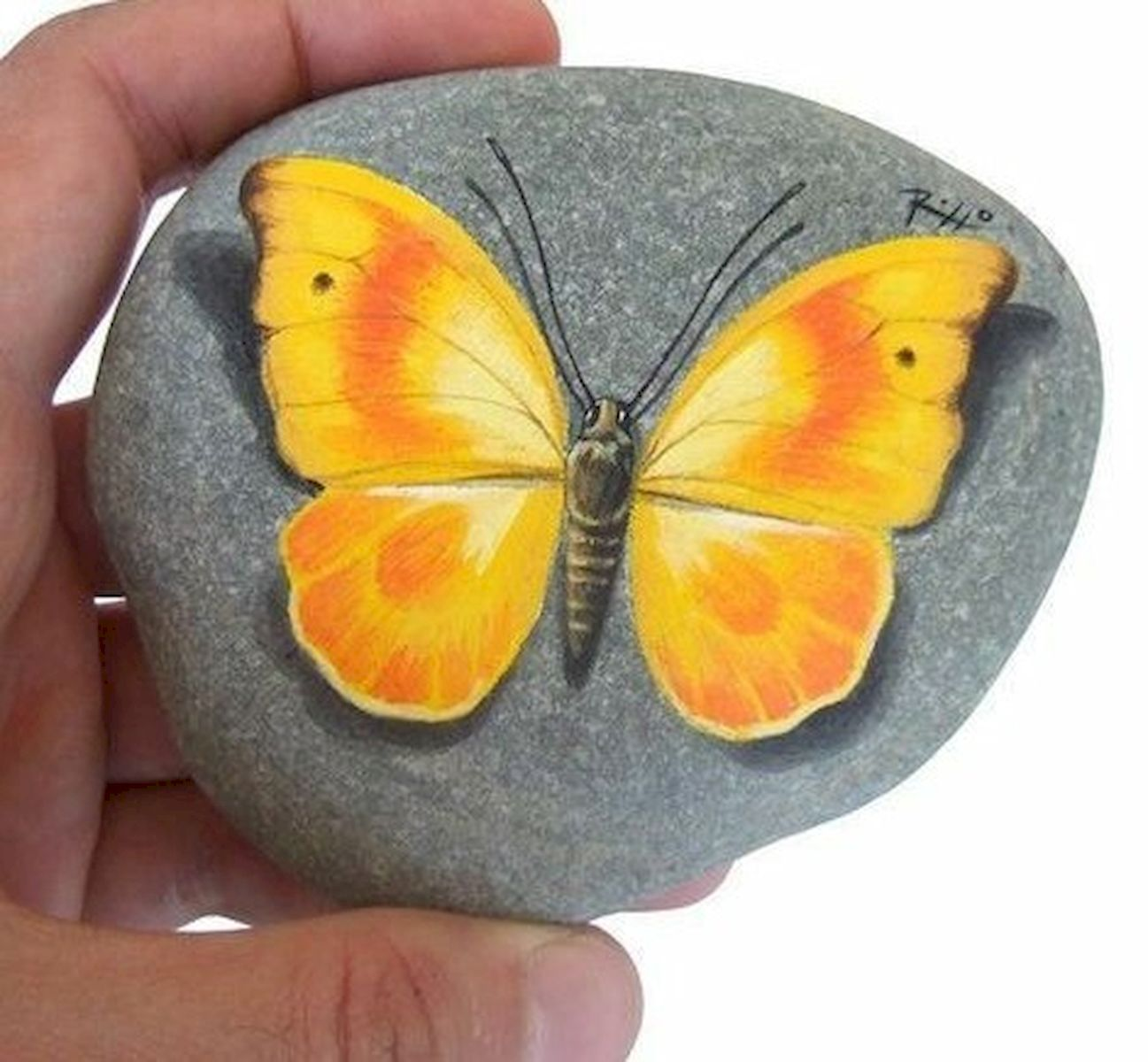 55 Cute DIY Painted Rocks Animals Butterfly Ideas (49)