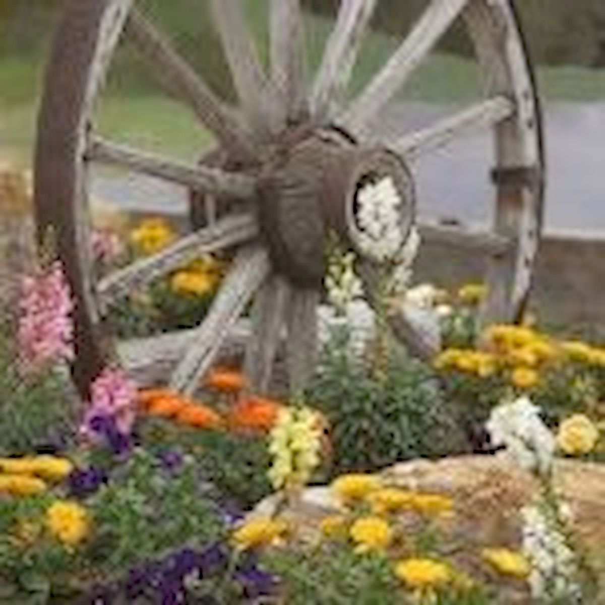 60 Creative DIY Garden Art From Junk Design Ideas (38)