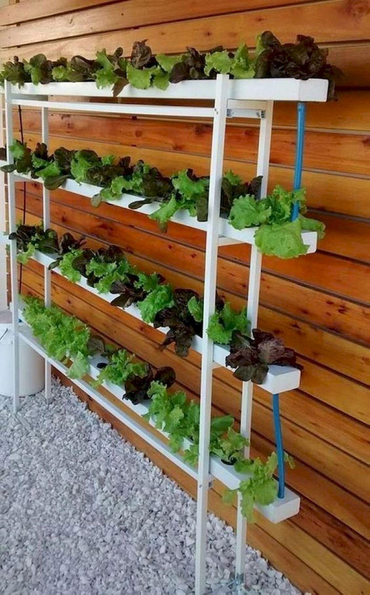 44 Creative DIY Vertical Garden Ideas To Make Your Home Beautiful (14)