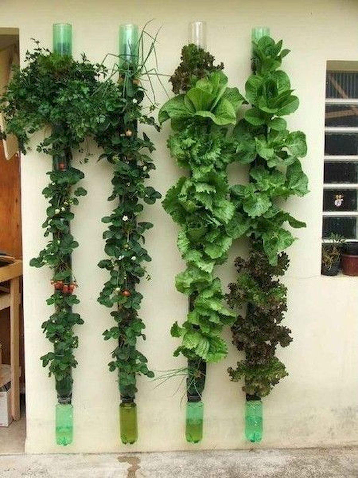 44 Creative DIY Vertical Garden Ideas To Make Your Home Beautiful (31)