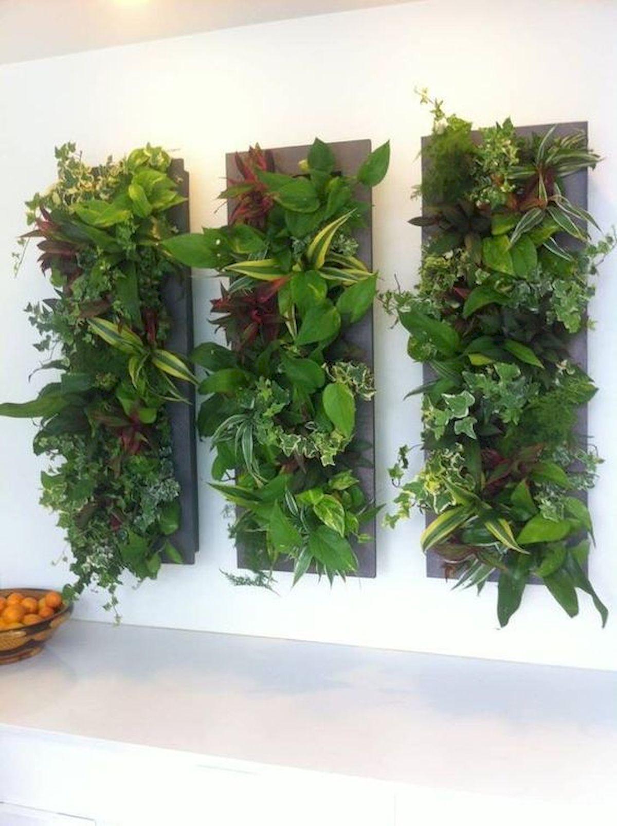 44 Creative DIY Vertical Garden Ideas To Make Your Home Beautiful (35)