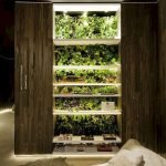 44 Creative DIY Vertical Garden Ideas To Make Your Home Beautiful (37)