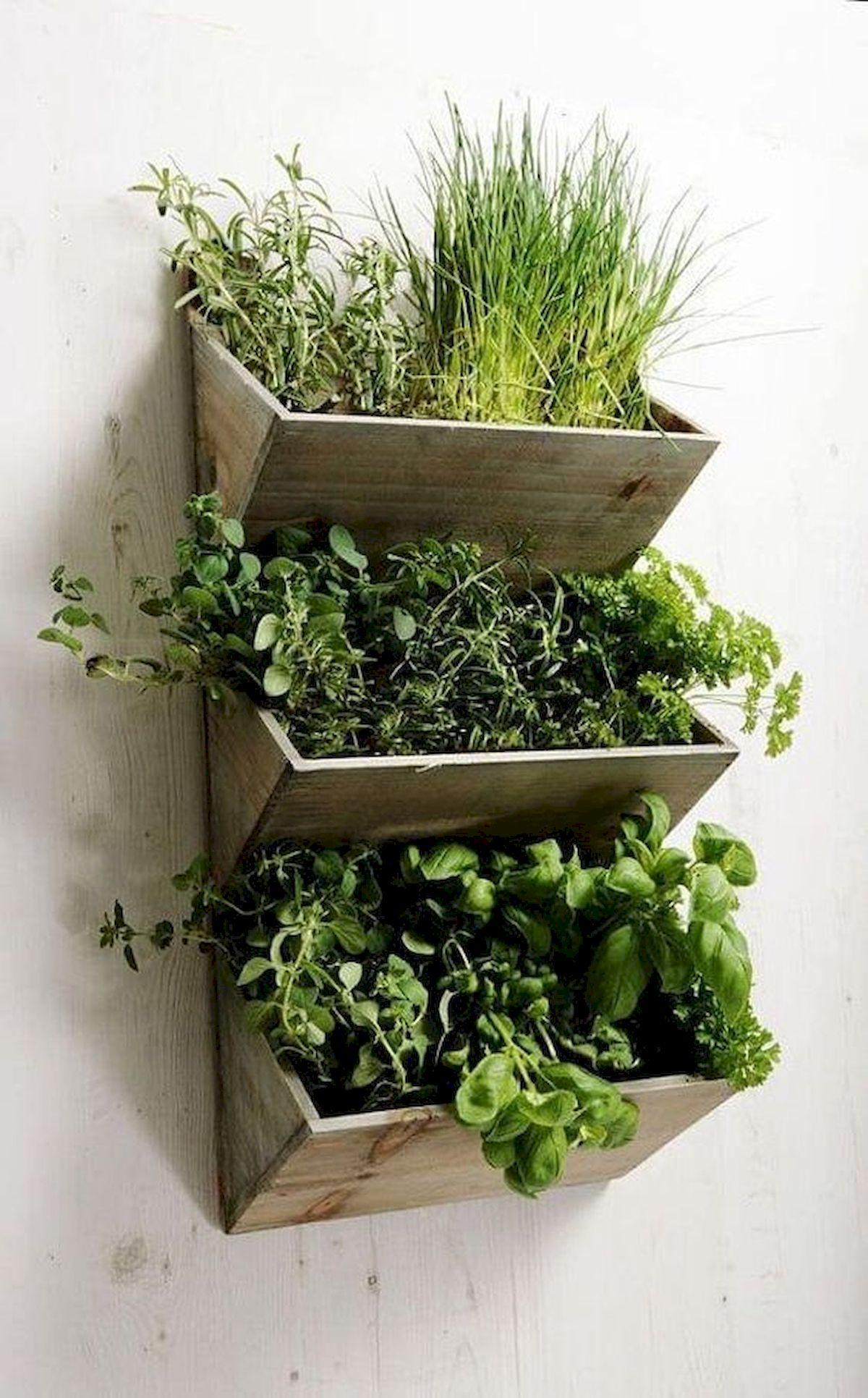 44 Creative DIY Vertical Garden Ideas To Make Your Home Beautiful (9)