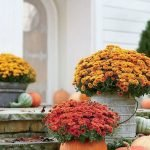 35 Beautiful DIY Fall Outdoor Decor Ideas You Will Like (6)
