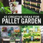 Amazing Things To Do With Pallets In The Garden