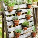 Best Wooden Pallet Ideas For Garden