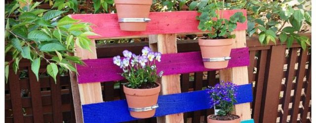 Beautiful  things to do with pallets in the garden